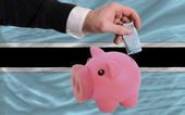 Funding euro into piggy rich bank national flag of botswana — Stock Photo