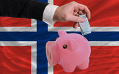 Finansiering euro i piggy rika bank nationella flagga norge — Stockfoto