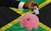 Funding euro into piggy rich bank national flag of jamaica — Stock Photo