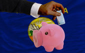 Funding euro into piggy rich bank flag of american state of mont — Stock Photo