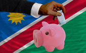 Funding euro into piggy rich bank national flag of namibia — Stock Photo