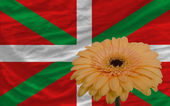 Gerbera flower in front national flag of of basque — Stock Photo