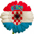 Gerbera daisy flower in colors national flag of croatia   on whi — Stock Photo