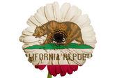 Califor のアメリカの状態の色旗のガーベラ デイジーの花 — ストック写真