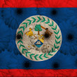 Stylized  national flag of belize    with gerbera flowers — Stock Photo