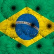 Stylized  national flag of brazil    with gerbera flowers — Stock Photo