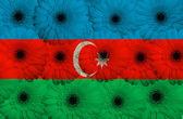 Bandera nacional estilizada de azerbaiyán con flores gerbera — Foto de Stock