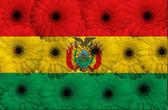 Bandera nacional estilizada de bolivia con las flores de gerbera — Foto de Stock