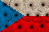 Stylized national flag of czech with gerbera flowers — Foto de Stock