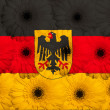 Stylized national flag of germany with gerberflowers — Stock Photo #24870231