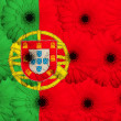 Stylized  national flag of portugal    with gerbera flowers - Stok fotoğraf