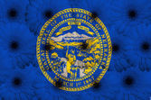 Stiliserade flagga amerikanska staten i nebraska med gerbera flo — Stockfoto
