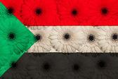 Stylizowane flagi narodowej w sudanie kwiatami gerbera — Zdjęcie stockowe