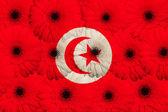 Bandera nacional estilizada de túnez con flores gerbera — Foto de Stock
