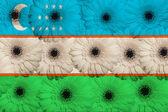 Stylizowane flagi narodowej z uzbekistanu z gerbera kwiaty — Zdjęcie stockowe