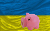 Piggy rich bank and national flag of ukraine — Stock Photo