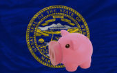 Piggy rich bank and flag of american state of nebraska — Stock Photo