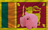 Piggy rich bank and national flag of srilanka — Stock Photo