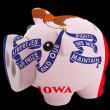 Stock Photo: Piggy rich bank in colors flag of americstate of iowfor s