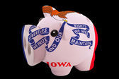 Piggy rich bank in colors flag of american state of iowa for s — Stock Photo