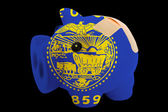 úpadku prasátko bohaté banky v barvách vlajky amerického státu — Stock fotografie