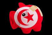 Faillite tirelire riche en couleurs du drapeau national de la tunisie — Photo