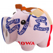 Stock Photo: Closed piggy rich bank with bandage in colors flag of americs