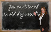 Teacher showing You can t teach an old dog new tricks on blackbo — Stockfoto