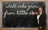 δάσκαλος δείχνει ψηλές βελανιδιές αυξάνονται από μικρό επίτευγμα δημιουργήθηκε κάτι στο blackboard — Φωτογραφία Αρχείου