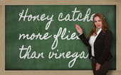 Teacher showing Honey catches more flies than vinegar on blackbo — Φωτογραφία Αρχείου