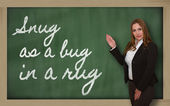 Teacher showing Snug as a bug in a rug on blackboard — Stock Photo