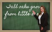 Profesor mostrando altos robles crece de pequeñas bellotas en pizarra — Foto de Stock