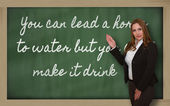 Teacher showing You can lead a horse to water but you can t on b — Foto de Stock