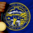 Gold medal for sport and flag of americstate of nebraska — Stock fotografie #27523191