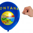 Bursting balloon colored in  flag of american state of montana — Stock Photo