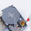 Technician with open hard-disk — Stock Photo