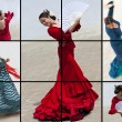 Montage of Woman Spanish Flamenco Dancer — Stock Photo #13809794