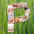 Stock Photo: Montage of Beautiful Women at Health Spa