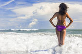 Rear View Beautiful Bikini Woman At Beach — Stock Photo