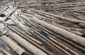 Log Jam of Tree Trunks Floting on a River — Stock Photo