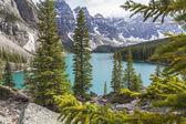 Moraine Lake, Banff National Park, — Stock Photo