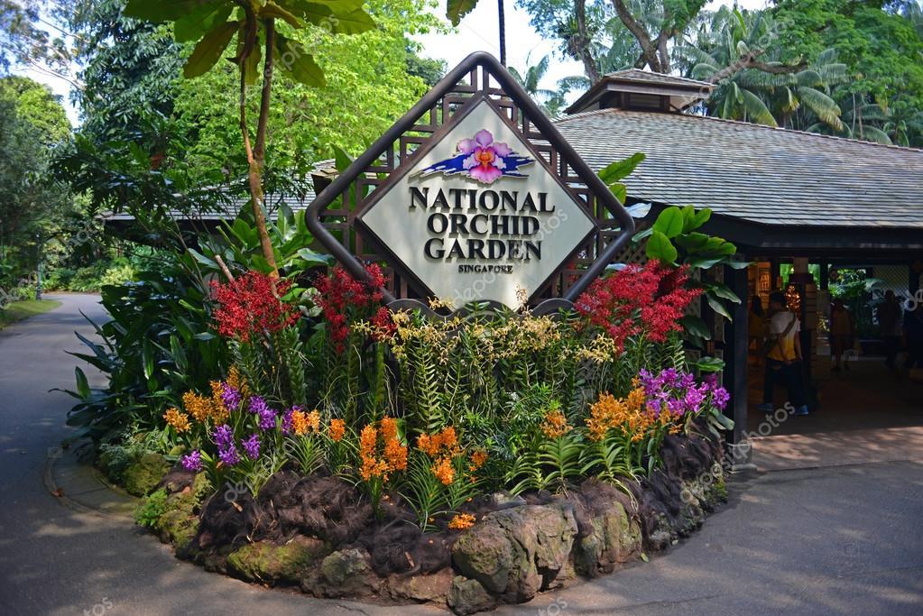 Jardin national d 39 orchid es au jardin botanique de for Au jardin singapore botanic gardens