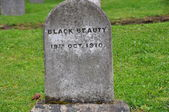 Grave of Black Beauty — Stock Photo