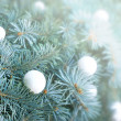 Snowball on christmas tree — Stock Photo