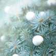 Snowball on Christmas tree - Merry Christmas — Stock Photo