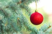 Red Christmas ball (xmas ball) on Christmas tree — Stock Photo