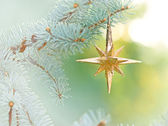 Decoration with Christmas star — Stock Photo