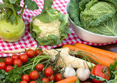 Fresh organic vegetables on the tablecloth — Stock Photo