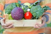 Crate full of organic food — Stock Photo