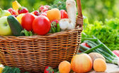 Basket full of organic fruit and vegetables — Stock Photo